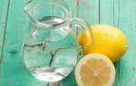 وصفات و خلطات طبيعية و سهلة للتخلص من السموم في الجسم و كيفيات لإنقاص الوزن الزائد