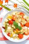 pats aux tomates séché
